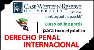 curso de derecho penal internacional online
