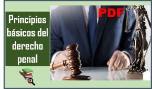 principios-basicos-del-derecho-penal